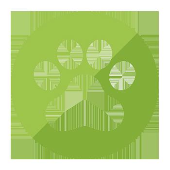 tratamentos de pelos - cães e gatos